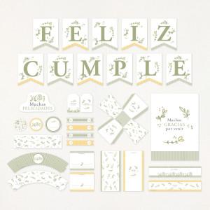 "Imprimible KIT fiesta cumpleaños - ""AIRE"""