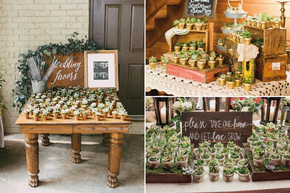 01-Como-regalar-plantas-y-semillas-a-invitados-boda