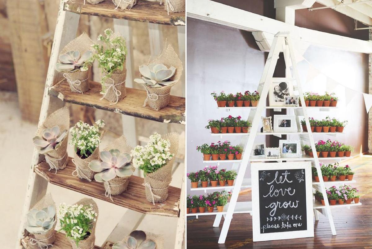03-Como-regalar-plantas-y-semillas-a-invitados-boda