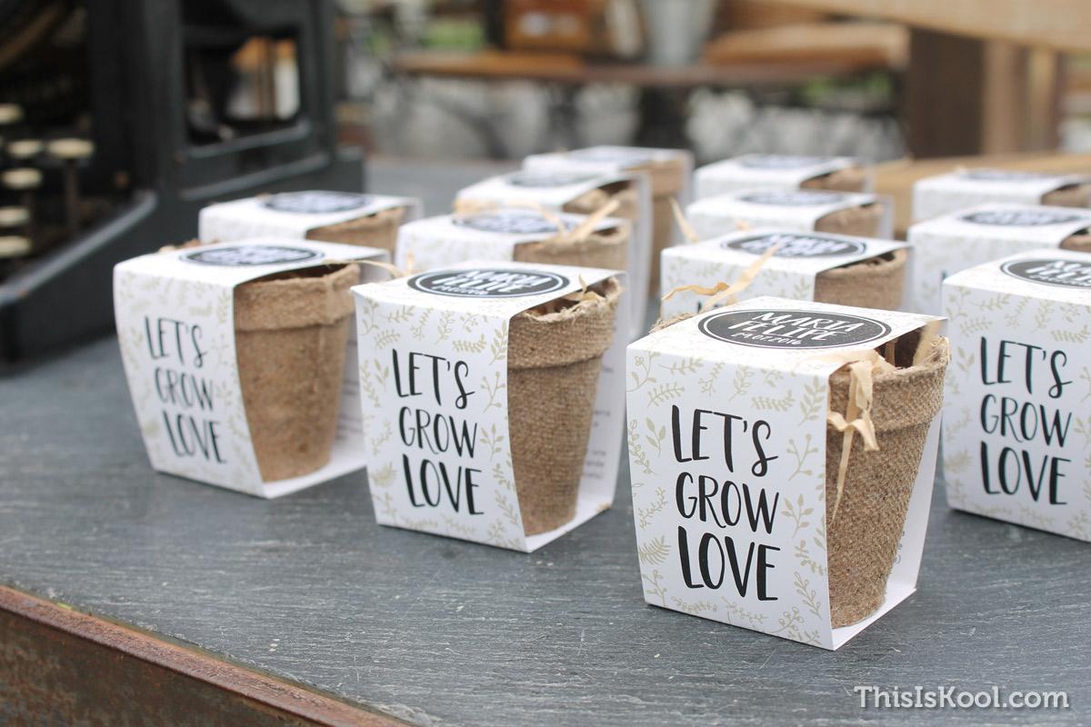 04-Como-regalar-plantas-y-semillas-a-invitados-boda