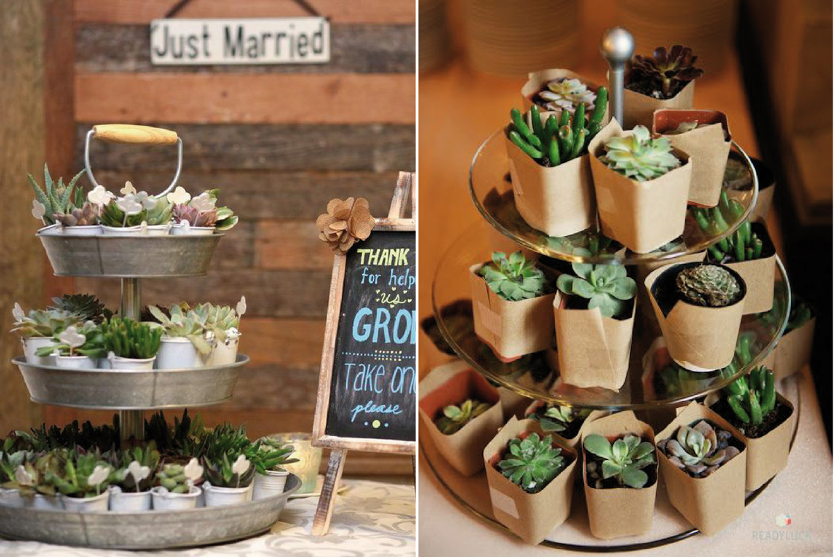05-Como-regalar-plantas-y-semillas-a-invitados-boda
