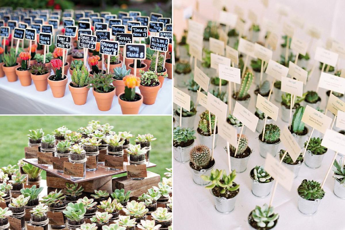 09-Como-regalar-plantas-y-semillas-a-invitados-boda