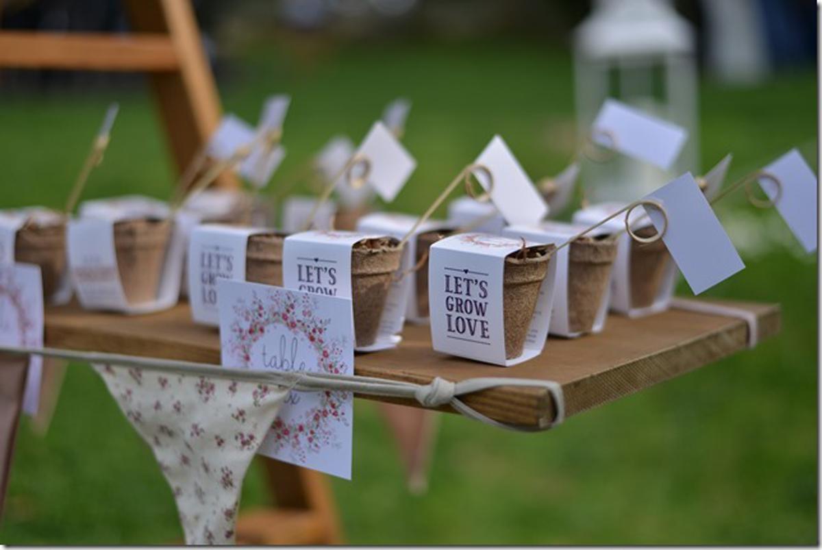 11-Como-regalar-plantas-y-semillas-a-invitados-boda