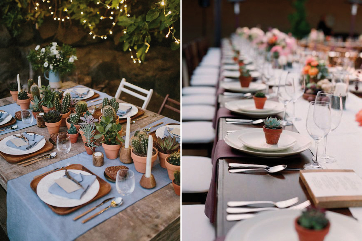 12-Como-regalar-plantas-y-semillas-a-invitados-boda