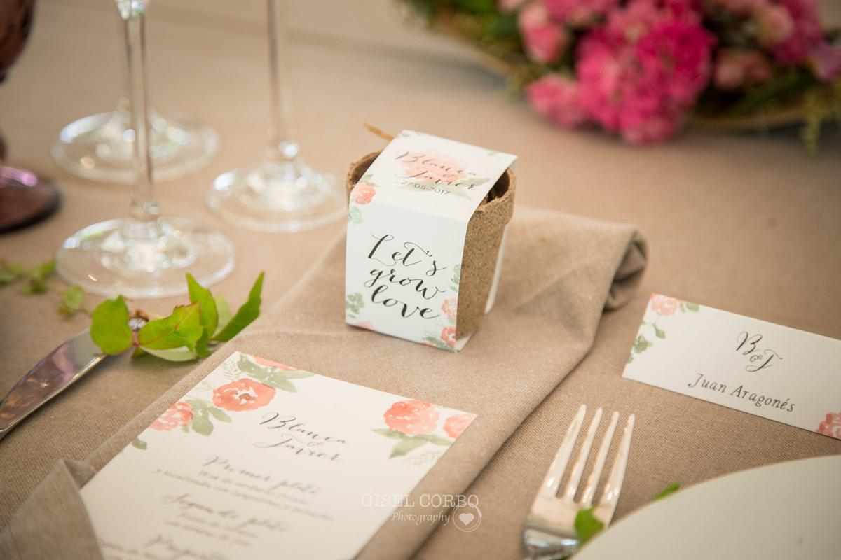14-Como-regalar-plantas-y-semillas-a-invitados-boda