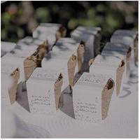 Kit de Semillas