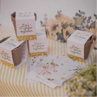 Kits de semillas